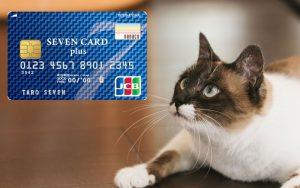 カードと猫